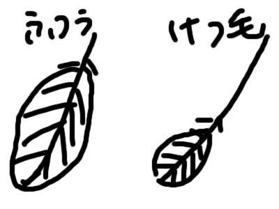 2012_0821.jpg